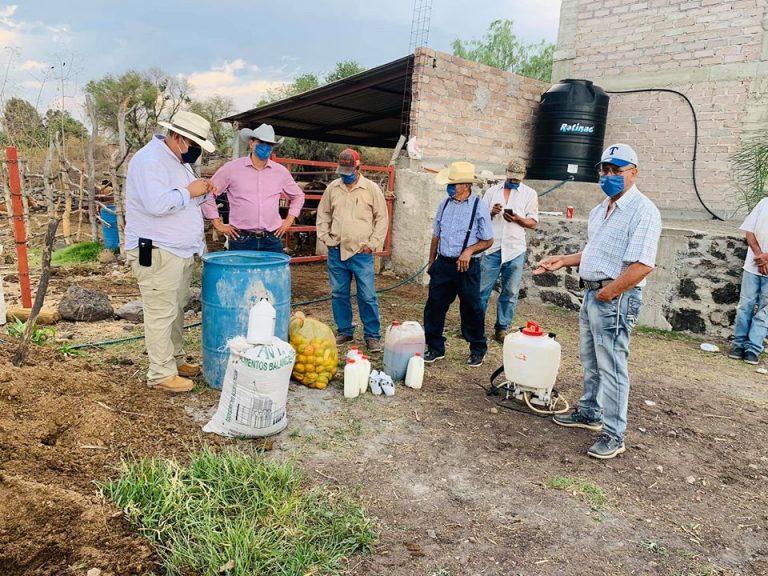 Agricultura Sustentable, la semilla para transformar el agro en Michoacán