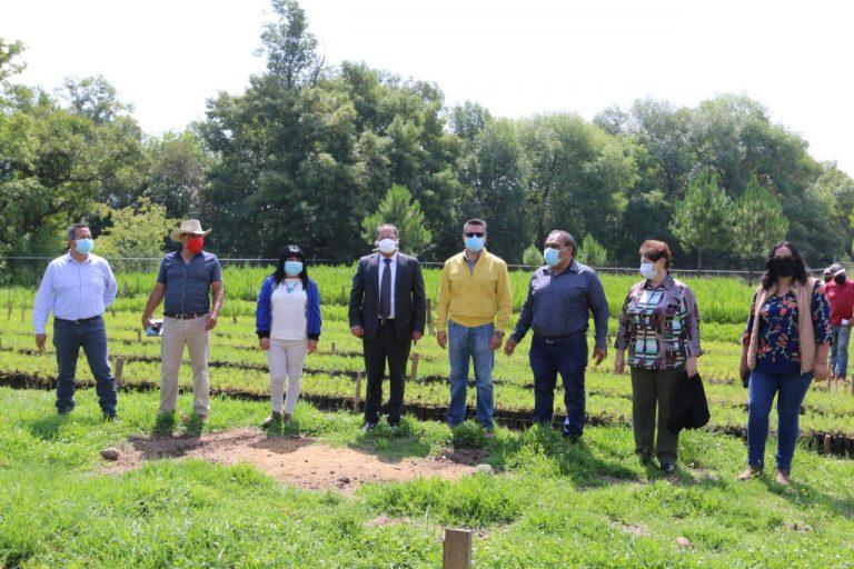 José Luis Téllez realizó la entrega simbólica de 500 mil plantas en beneficio de los silvicultores del municipio