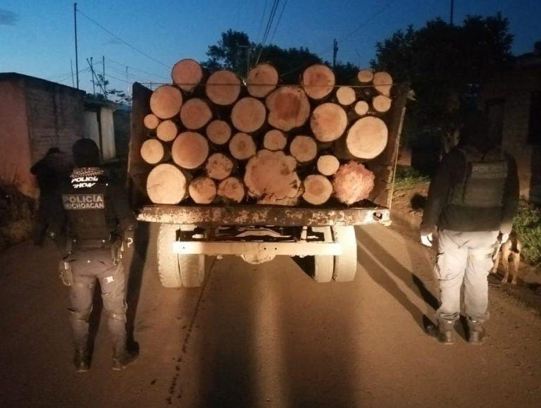 Asegura SSP vehículo cargado con rollos de madera ilegal, en Zitácuaro