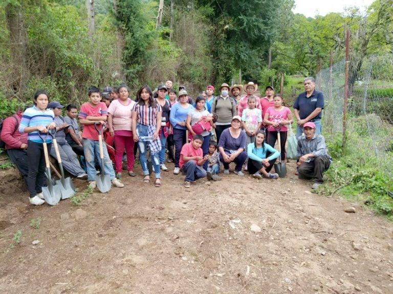 Grupo Cacique realiza reforestación de 13 mil plantas.
