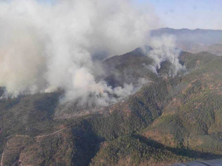 50% de avance en la mitigación del fuego en el incendio de Las Joyitas en Agostitlán