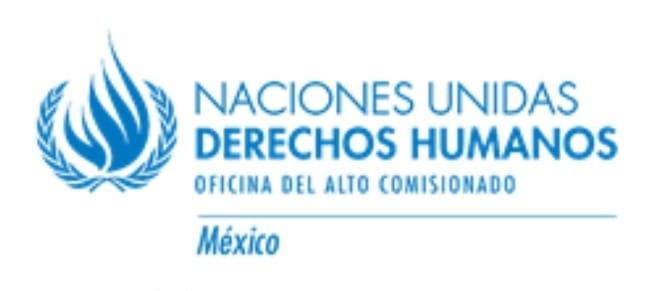 CNDH y ONU-DH llaman a garantizar la labor de las personas defensoras de derechos humanos y periodistas que documentan el flujo migratorio en Chiapas